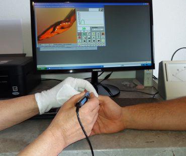 Biokybernetische Behandlung